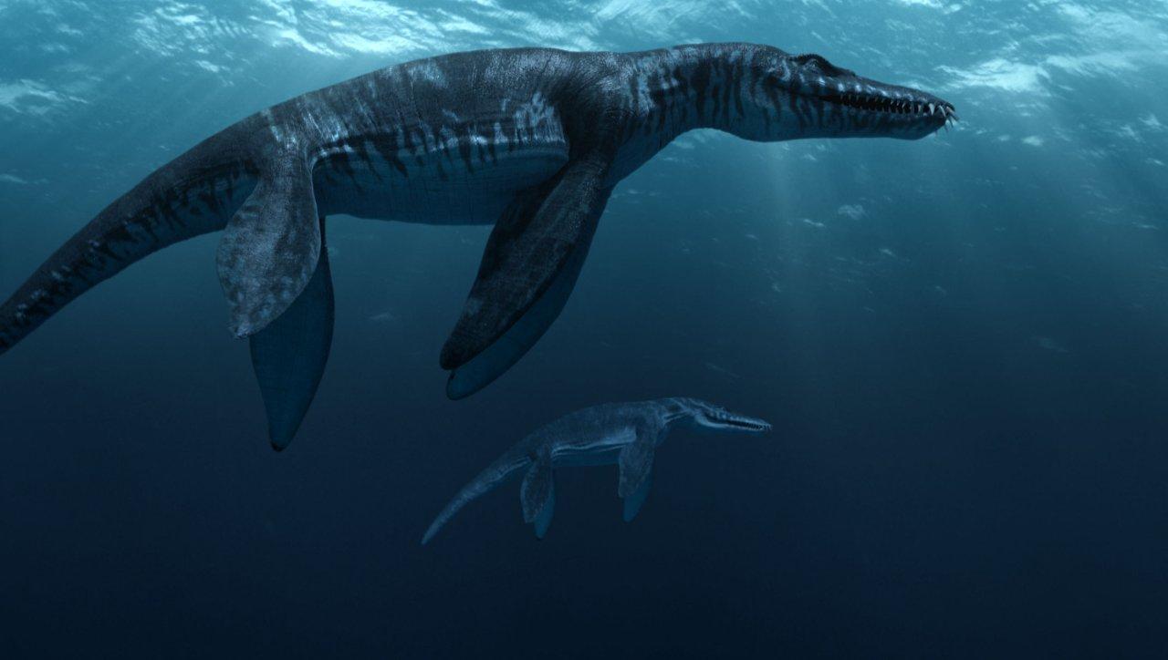 фильм морские динозавры 3d путешествие в доисторический мир отзывы